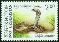 """9.""""Среднеазиатская кобра"""""""