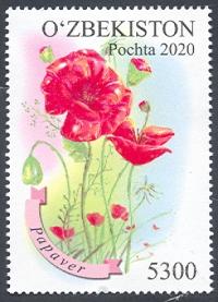 №1427 «Флора Узбекистана»