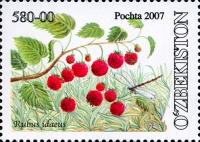 760.«Rubus idaeus»