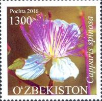 1153-1155.Серия почтовых марок «Флора Узбекистана»