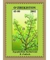 436-443. Серия «Флора. Редкие растения Узбекистана»