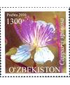 """1153-1155.""""Flora. O'zbekistonning noyob o'simliklari""""  pochta markalari turkumi"""